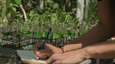hand writing a note with plants in the background